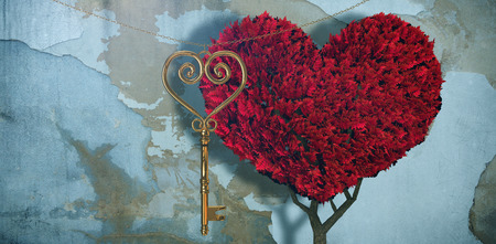 Love heart plant against rusty weathered wall