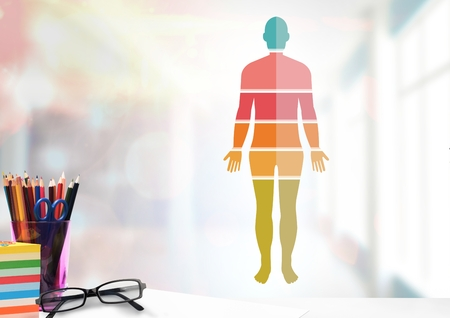 Digital composite of Colorful Human Body sections and educational objects