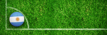 Football in argentina colours against closed up view of grass Stock Photo