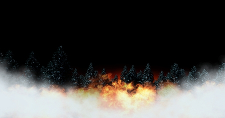 Digital composite of Tree forest and burning fire