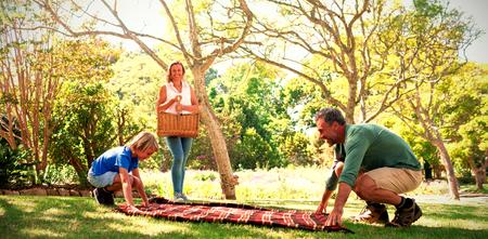 padre e hijo examinan la manta de picnic mientras que la madre que lleva la cesta en el parque