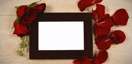 Empty photo frame and rose flower