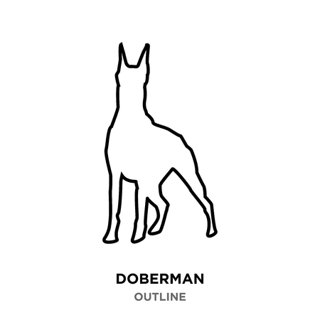 A doberman outline on white background