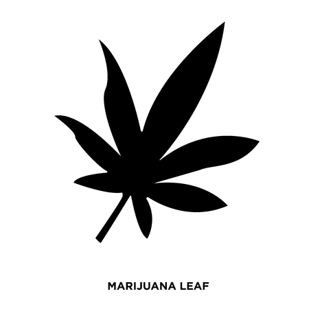 Marijuana leaf silhouette on white background, in black color.