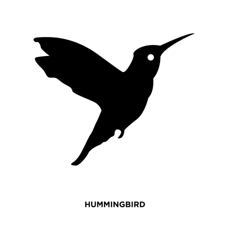 A hummingbird silhouette on white background, in black presentation