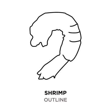 shrimp outline on white background