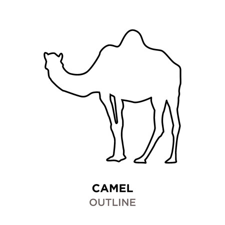 camel outline on white background