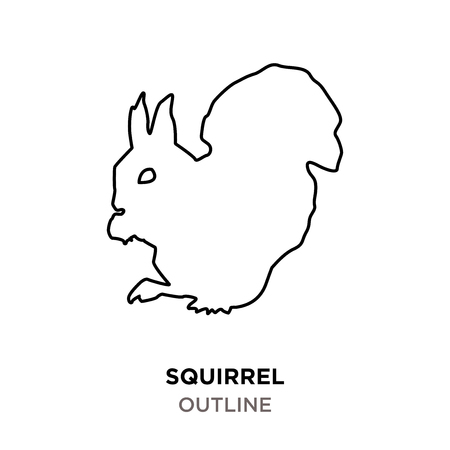 Outline of a squirrel on white background.