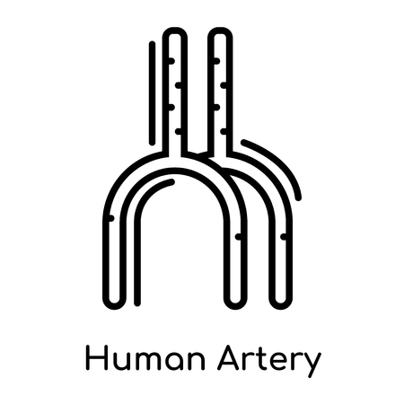 Human Artery icon isolated on white background for your web and mobile app design , vector black sign and symbol , outline thin element
