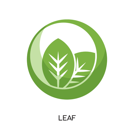 leaf logo png isolated on white background for your web and mobile app design , colorful vector icon, brand sign & symbol for your business