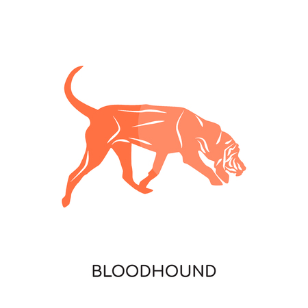 bloodhound logo isolated on white background for your web and mobile app design , colorful vector icon, brand sign & symbol for your business  イラスト・ベクター素材