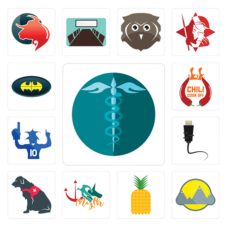 Set Of 13 simple editable icons such as hipaa, montain, pinapple, myth, service dog, ethernet, sports fan, chili cook off, bat can be used for mobile, web UI Illustration