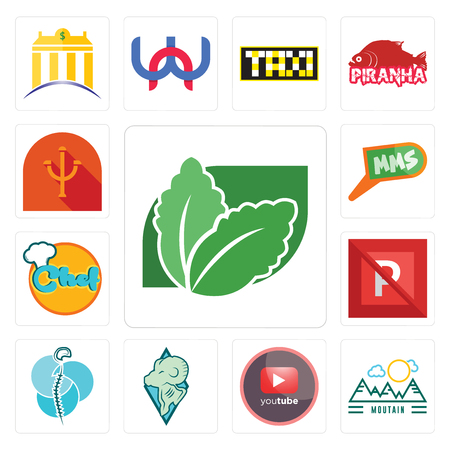 Set Of 13 simple editable icons such as stevia, moutain, pinetree, rams, neurosurgery, no parking, chef, mms, psi can be used for mobile, web UI