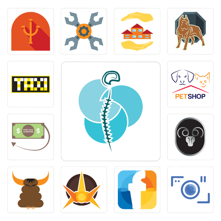 Set Of 13 simple editable icons such as neurosurgery, camera, f, nova, bullshit, ram, money back guarantee, petshop, taksi can be used for mobile, web UI