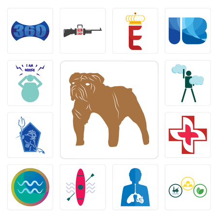 Set Of 13 simple editable icons such as bulldog, commodities, inflammation, kayak, aquarius, image of cross, neptune, ambition, obesity can be used for mobile, web UI
