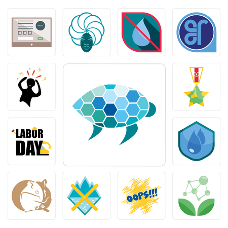 Set Of 13 simple editable icons such as sea turtle, antioxidant, oops, crossed skis, hamster, water resistant, labor day, veteran, panic can be used for mobile, web UI