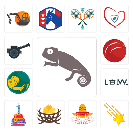Set Of 13 simple editable icons such as chameleon, shooting stars, burrito, bird nest, 1st birthday, law, welder, cricket ball, cannon can be used for mobile, web UI