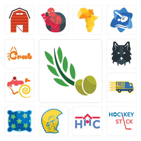 Set Of 13 simple editable icons such as olive leaves, hockey stick, home health care, warrior head, pillow, free delivery, confectionery, wolf face, crab can be used for mobile, web UI