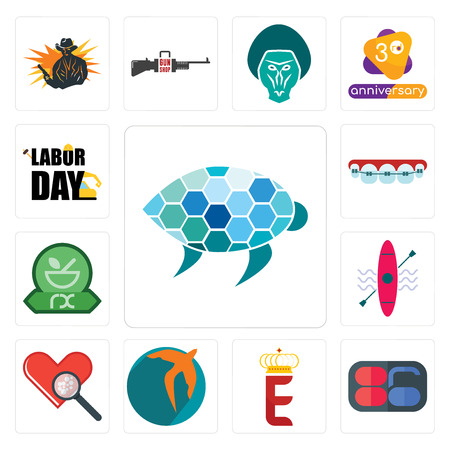 Set Of 13 simple editable icons such as sea turtle, 86, e crown, swift, cholesterol, kayak, pharmacy, orthodontist, labor day can be used for mobile, web UI Illustration