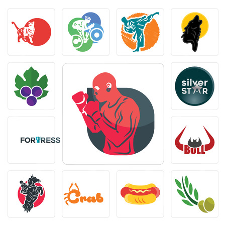 Set Of 13 simple editable icons such as boxer, olive leaves, hot dog, crab, equestrian, bull horn, fortress, silver star, grape leaves can be used for mobile, web UI Stock Vector - 102150232