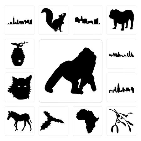 Ensemble de 13 icônes modifiables simples telles que gorille, contour de gui sur fond blanc, fond de continent africain peut être utilisé pour mobile, interface utilisateur web