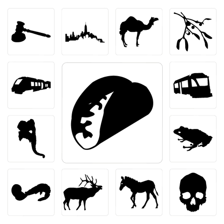 Set Of 13 simple editable icons such as taco outline on white background, skull zebra background can be used for mobile, web UI Illustration