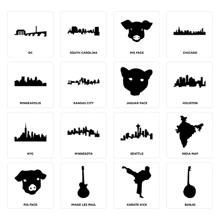 Set Of 16 simple editable icons such as banjo, karate kick, image les paul, pig face, india map, dc, minneapolis, nyc, jaguar face can be used for mobile, web UI