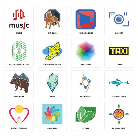 Conjunto de 16 iconos editables sencillos como maracuyá, stevia, molinillo, amamantamiento, equipo de pesca, música, árbol de la vida celta, oso libre, heptágono puede utilizarse para dispositivos móviles, la interfaz de usuario web