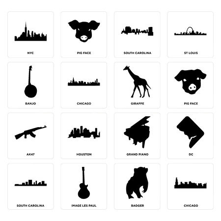 Set Of 16 simple editable icons such as chicago, badger, image les paul, south carolina, dc, nyc, banjo, ak47, giraffe can be used for mobile, web UI Illustration