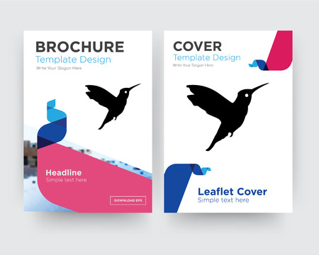hummingbird brochure flyer design template with abstract photo background, minimalist trend business corporate roll up or annual report