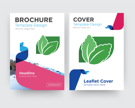 stevia brochure flyer design template with abstract photo background, minimalist trend business corporate roll up or annual report