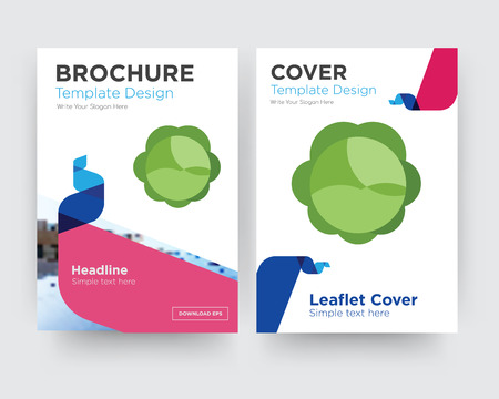 cabbage brochure flyer design template with abstract photo background, minimalist trend business corporate roll up or annual report