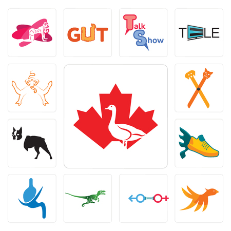 Set Of 13 simple editable icons such as canada goose, bird m, sex store, velociraptor, gastroenterology, flying shoe, boston terrier, pet groomer, ganesh can be used for mobile, web UI