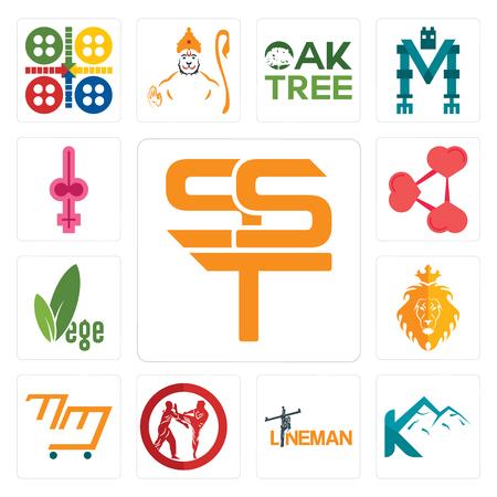 Conjunto de 13 iconos editables sencillos como sst, k mountain, lineman, krav maga, mini mart, judah and the lion, vege, share png, shemale se puede utilizar para dispositivos móviles, la interfaz de usuario web