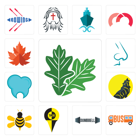 Set Of 13 simple editable icons such as oak leaf, , dumbbell, honey bee, dental clinic, nose, maple leaf can be used for mobile, web UI