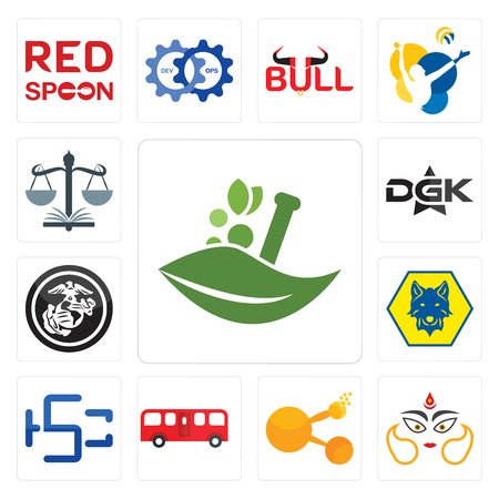 Set Of 13 simple editable icons such as ayurvedic, durga, bitconnect, bus, hsc, cub scout, usmc, dgk, naacp can be used for mobile, web UI Stock Vector - 102583335
