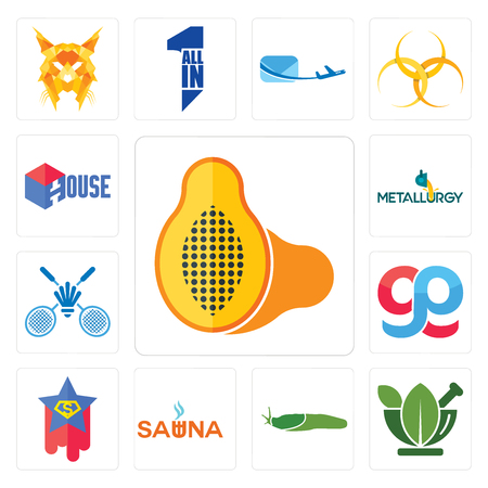 Set Of 13 simple editable icons such as papaya, ayurvedic, slug, sauna, superstar, gg, badminton club, metallurgy, house can be used for mobile, web UI