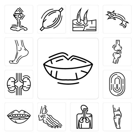 Set Of 13 simple editable icons such as Human Lips, Body Side, Respiratory System, Foot Bones, Mouth Open, Fingerprint, Two Kidneys, Bones Joint can be used for mobile, web UI Vettoriali