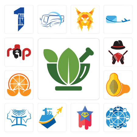 Set Of 13 simple editable icons such as ayurvedic, ferris wheel, superstar, , papaya, mandarin, outlaws, rap can be used for mobile, web UI Ilustrace
