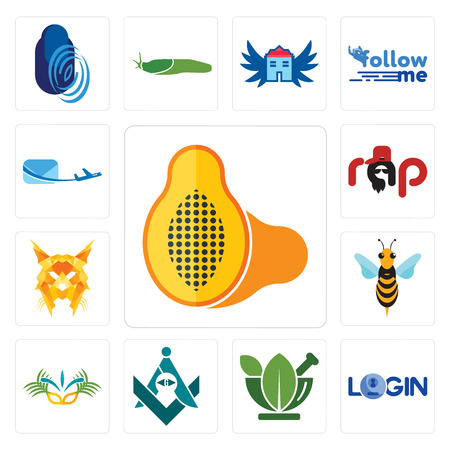 Set Of 13 simple editable icons such as papaya, login, ayurvedic, freemasons, carnaval, hornet, lynx, rap, air mail can be used for mobile, web UI