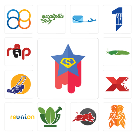 Set Of 13 simple editable icons such as superstar, orange lion, wild hog, ayurvedic, reunion, xfactor, lawn mower, slug, rap can be used for mobile, web UI