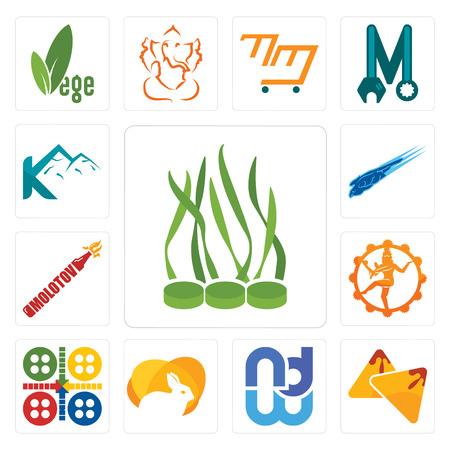 Set Of 13 simple editable icons such as spirulina, samosa, wnd, rabit, ludo, nataraj, molotov, peregrine falcon, k mountain can be used for mobile, web UI