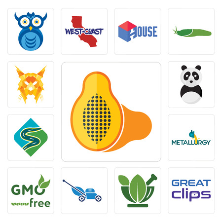 Set Of 13 simple editable icons such as papaya, great clips, ayurvedic, mower, gmo free, metallurgy, winding road, panda mascot, lynx can be used for mobile, web UI