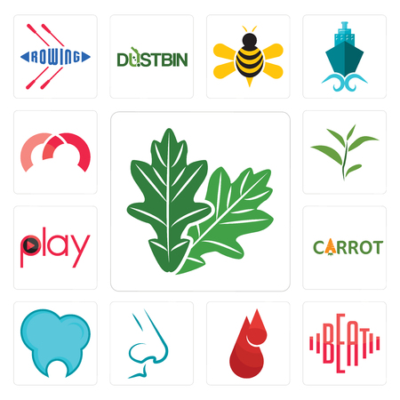 Set Of 13 simple editable icons such as oak leaf, beat, blood drop, nose, dental clinic, carrot, play, tea m can be used for mobile, web UI Çizim