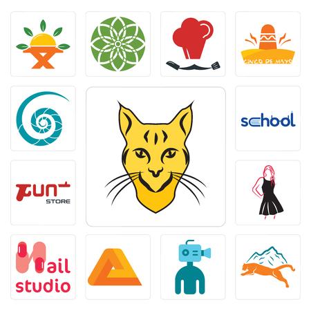 Set van 13 eenvoudige bewerkbare pictogrammen