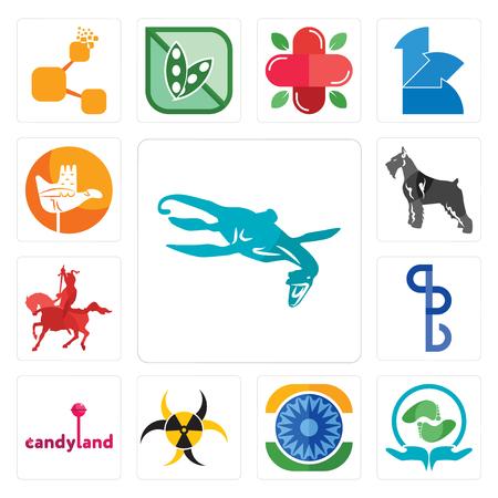 Set van 13 eenvoudige bewerkbare pictogrammen zoals Loch Ness Monster, Acupressuur, Ashok Chakra, Quarantaine, Candyland, BS, Ridder te paard, Schnauzer, Chandigarh kan worden gebruikt voor mobiel, web UI