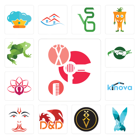 Set Of 13 simple editable icons such as salon, deceit, luxury, dungeons and dragons, anjaneya, kinova, lotus,   big frog can be used for mobile, web UI Illustration