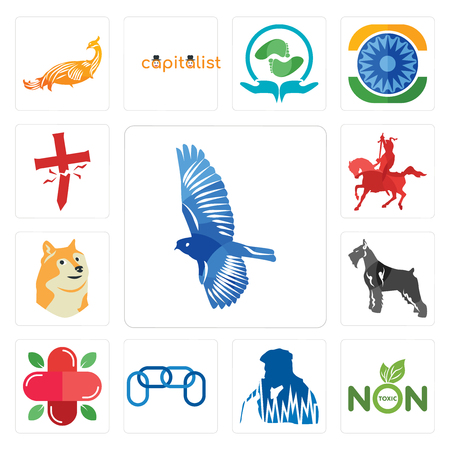 Set Of 13 simple editable icons such as bird, non toxic, beatbox, chainlink, farmacy, schnauzer, doge, knight on horseback, antichrist can be used for mobile, web UI Illustration
