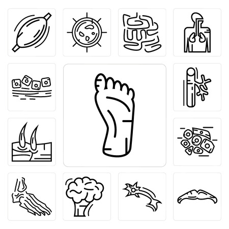 Set Of 13 simple editable icons such as Human Foot, Big Moustache, Neuron, Brain, Foot Bones, Skin Cells, Men Knee, Blood Vessel, Mucous Membrane can be used for mobile, web UI