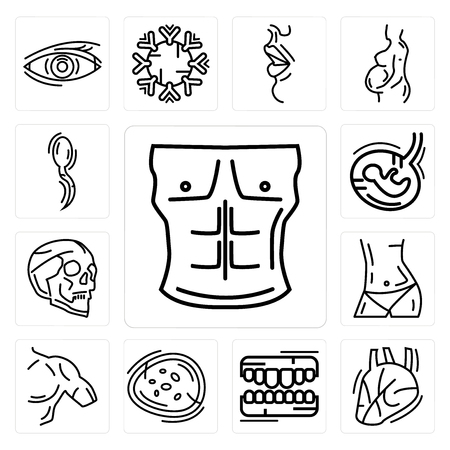 Set Of 13 simple editable icons such as Men Chest, Human Heart, Teeth, Basophil, Shoulder, Abdomen, Skull, Fetus, Two Spermatozoon can be used for mobile, web UI